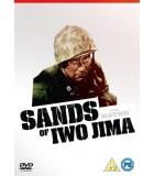 Sands of Iwo Jima (1949) DVD