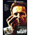 Hide in Plain Sight (1980) DVD