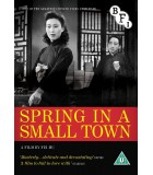 Spring In A Small Town (1948) DVD