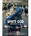 White god (2014) DVD