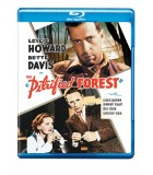 The Petrified Forest (1936) Blu-ray