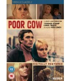Poor Cow (1967) DVD