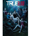 True Blood kausi 3 (dvd)
