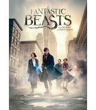 Fantastic Beasts and Where to Find Them (2016) DVD