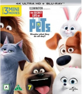 The Secret Life of Pets (2016) (4K UHD + Blu-ray)