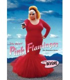 Pink Flamingos (1972) 25th Anniversary Edition DVD