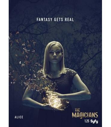 The Magicians - Season 2. (2015-) (4 DVD)