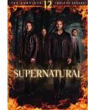 Supernatural - Kausi 12 (6 DVD)