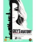 Grey's Anatomy - Kausi 13. (2005– ) (6 DVD)