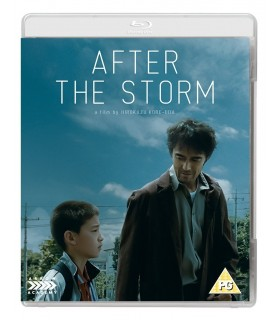 After the Storm (2016) Blu-ray 29.11.
