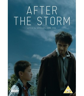 More about After the Storm (2016) DVD