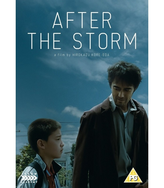 After the Storm (2016) DVD 29.11.