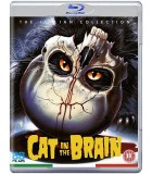 A Cat in the Brain (1990) Blu-ray