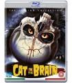 A Cat in the Brain (1990) Blu-ray