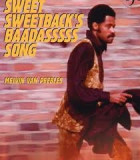 Sweet Sweetbacks Baadassss Song (1971) DVD