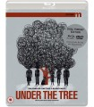 Under the Tree (2017) (Blu-ray + DVD)