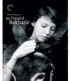Au hasard Balthazar (1966) Blu-ray