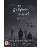 An Elephant Sitting Still (2018) DVD