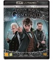 Fantastic Beasts: The Crimes of Grindelwald (2018) (4K UHD + Blu-ray)