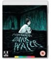 Dark Water (2002) (Blu-ray + DVD)