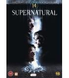 Supernatural - Kausi 14 (5 DVD)