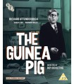 The Guinea Pig (1948) (Blu-ray + DVD)