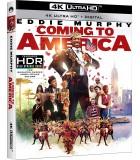 Coming To America (1988) (4K UHD + Blu-ray)