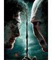 Harry Potter ja kuoleman varjelukset, osa 2 (Blu-ray + DVD) (2011)