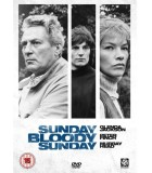 Sunday, Bloody Sunday (1971) DVD