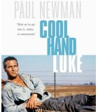 Cool Hand Luke (1967) Blu-ray