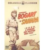 Sahara (1943) DVD