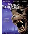An american werewolf in London (1981) DVD