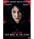 This Must Be the Place (2011) DVD