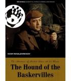 Sherlock Holmes: Hound of the Baskervilles (1981) DVD
