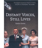 Distant Voices, Still Lives (1988) DVD