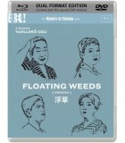 Floating Weeds (1959) (Blu-ray + DVD)