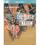 The Birth of a Nation (1915) DVD