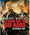 A Good Day to Die Hard (2013) DVD