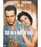 Cat on a Hot Tin Roof (1958) DVD
