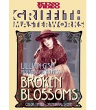 Broken Blossoms (1919) DVD