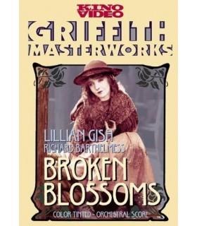 Broken Blossoms (1919) DVD