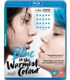 Blue Is the Warmest Colour (2013) Blu-ray